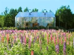 Naturhus: A glass act from Sweden | MNN - Mother Nature Network