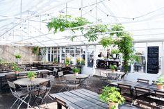 Man muss beinahe etwas suchen, wenn man ohne Plan die Insel Djurgården ansteuert und ein Ziel hat: Rosendals Trädgård. Auf der bei Touristen und Einheimischen gleichermaßen beliebten Ausflugsinsel ...