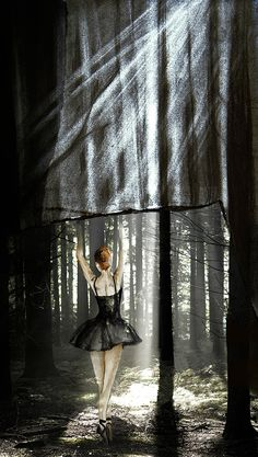 Dancing in the woods Fine Art Photography, Woods, Dancing, Illustration, Dance, Woodland Forest, Illustrations, Forests, Art Photography