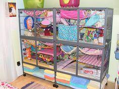Rat cage - full view by Vociferous, via Flickr
