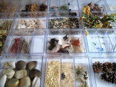 Environment as the Third Teacher: it is highly organized and arranged in such a way that the materials are intentionally placed to inspire and elicit learning. Playfully Inspired: A Journey Through Early Learning ≈≈