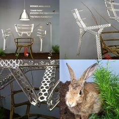 From Ventura Lambrate - And last but not least, Chair Farm from Werner Aisslinger was part of an exhibition called Instant Stories and imagines a future where furniture can be grown and harvested, rather than manufactured. I was particularly taken with the stuffed rabbit!