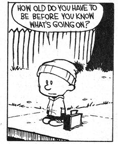 Calvin • How old do you have to be before you know what's going on?