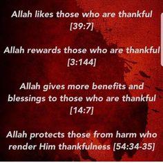 Quran Verses, Quran Quotes, Hindi Quotes, Islamic Qoutes, Religious Quotes, Allah Love, All About Islam, Prayer Quotes, Islam Quran