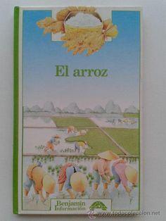 Resultado de imagen de EL ARROZ BENJAMIN INFORMACION