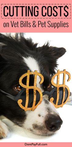 Cutting Costs on Vet Bills and Pet Supplies - http://www.dontpayfull.com/blog/cutting-costs-on-vet-bills-pet-supplies