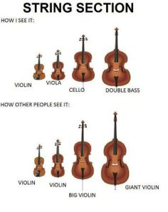 I can see the confusion between violin and viola for people who have never played in an orchestra, but the others. How can you get a cello and bass confused with a violin or viola? Orchestra Problems, Orchestra Humor, Flute Problems, Band Problems, Teaching Orchestra, Music Jokes, Music Humor, Funny Music, It's Funny