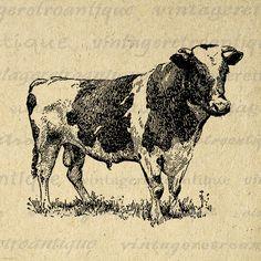 Holstein Cow Printable Digital Graphic Farm Animal Download Image Antique Clip Art Jpg Png Eps 18x18 HQ 300dpi No.3510 @ vintageretroantique.etsy.com