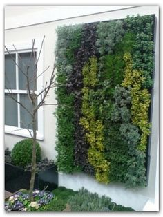 Edible green wall.