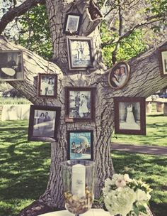 What a cute way to incorporate your family tree, literally, at your next special event!