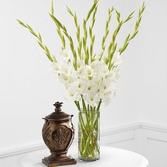 gladiolus in vase - Google Search