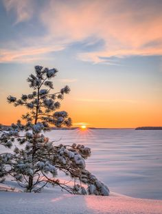 Great Photos, Cool Pictures, Dusk Till Dawn, I Love Winter, Heartland, Jack Frost, Planet Earth, Winter Wonderland, Natural Beauty