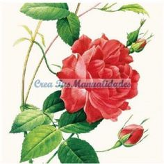 Servilletas para decoupage Chinese Rose 33 X 33 cm.