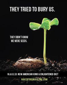the life we bury pdf