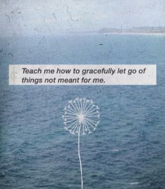 ...Let Go...like Blowing Dandelion Seeds in the wind...