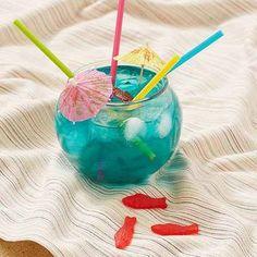 Fishbowl Drinking Bowl Kit