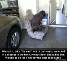 Funny Pictures Of The Day Vol. 142 (35 IMAGES) (15)
