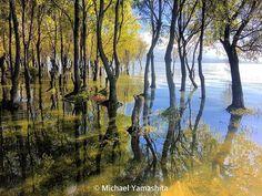 The north shore, Erhai Lake. Day 2 - traveling the Tea Horse Road. #xizhou #erhai #yunnan #china #teahorseroad #chamagudao @natgeo @natgeotravel @thephotosociety