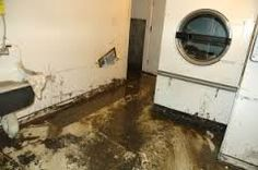 Sewage Backup. Many of us understand your own frustration while water damage and mold inside Tri-Cities hits anyone by means of sewage complications. Even as we are the most effective water damage and mold restoration providers, we provide some sort of quick-action option of which returns this safety and hygiene in your home by way of thorough & quick research and eradicating with the sewage.