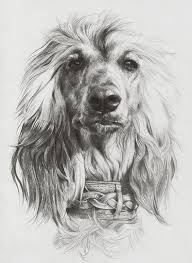 Kuvahaun tulos haulle piirustus koira