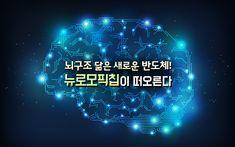 뇌구조 닮은 새로운 반도체! 뉴로모픽칩이 떠오른다