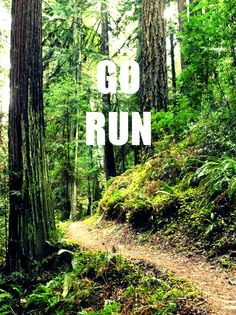 Go run the trails.