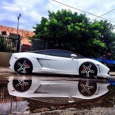 The Raging Bull - Lamborghini Gallardo Reflection