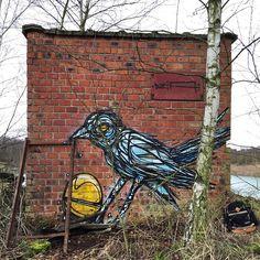 Dzia - Belgian Street Artist - Belgium - 01/2015 - |\*/| #dzia #streetart