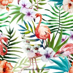 Ojngdafs Watercolor Tropical Flamingo Soft Polyester Show