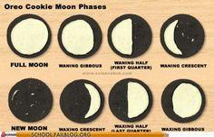 Moon Phase Fun!