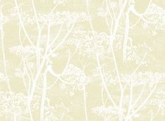 CONT. RESTYLED 95/9053 TAPETTI COW PARSLEY | Värisilmä