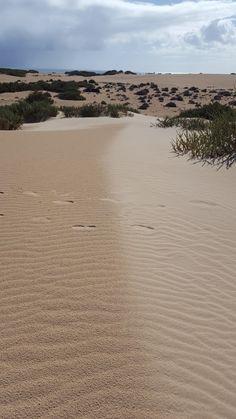 Dunes in Fuerteventura