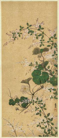 OGATA Korin (1658~1716), Japanese hanging scroll. Flowers. Rinpa style.