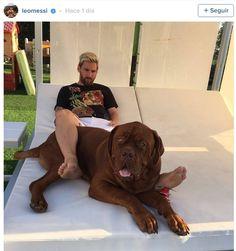 Lionel Messi ha sorprendido a sus seguidores con una foto actual de su perro Hulk, un dogo de Burdeos que le regaló Antonella Rocuzzo en enero del 2016