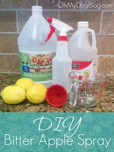 DIY bitter apple spray: A safe, healthy, inexpensive alternative to store-bought spray deterrents