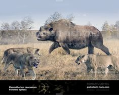 Prehistoric World, Prehistoric Creatures, Jurassic World, Jurassic Park, Animals Images, Cute Animals, Extinct Animals, Fauna, Mammals