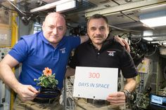 One-year mission crew members Scott Kelly of NASA (left) and Mikhail Kornienko of Roscosmos (right) celebrated their 300th consecutive day in space on Jan. 21, 2016. (Courtesy NASA)