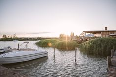 Last rays of sun at Seejungfrau restaurant in Jois at Lake Neusiedlersee Electric Boat, Austria Travel, Boat Rental, Boat Dock, Light Painting, Beach Club, Bird Watching, Great View, Day Trip