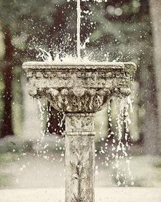 Water Fountain Photograph  Pewter Silver by LisaRussoPhotography, $25.00    http://www.etsy.com/treasury/NzE1MjIzNHwyMjU5Mzc0ODcz/a-provincial-love-story