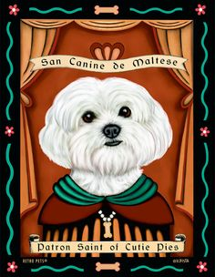 Maltese Art  Patron Saint of Cutie Pies  8x10 by RetroPetsGallery, $20.00
