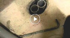 Bombeiros Usam Invulgar Método Para Resgatar Gado Preso Dentro De Canalização