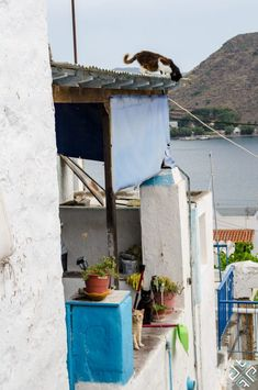 Looking for a beautiful Greek island, a relaxing place where you can retreat to and enjoy a quality vacation? Here are our 12 reasons to visit Patmos Relaxing Places, Greek Islands, Vacation, Greek House, Greek, Houses, Greek Isles, Vacations, Holidays