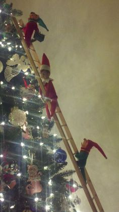 I could use my grandmothers ladder! She does not use it anymore, and I wonder if she would hand it down for me to use. :) that would mean a lot to me and be fun for the kids! A Shelf, Elf On The Shelf, Shelves, Christmas Ideas, Xmas, Grandmothers, Shelf Ideas, Ladder, Action