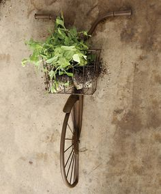 Add unexpected appeal to your décor with art that looks like the front end of a bicycle. An attached basket is suitable for filling with flowers or other greenery.