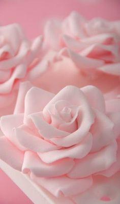 Pink | Pastel | Rosé | Salmon | Peach | Blush | Pinku | Rozovyy | Rosa | ピンク | розовый | Rosado |  Sugar Roses