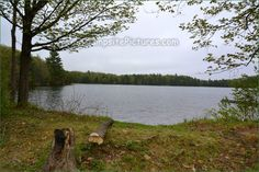 Sharbot Lake Provincial Park, Camping in Ontario Parks Ontario Parks, Campsite, Picture Video, Canada, Mountains, Nature, Pictures, Travel, Photos
