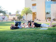 Why study in the library when you can study on the lawn OUTSIDE the Library?