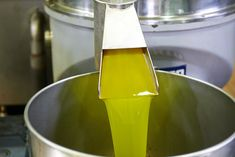 After a long day harvesting in the olive groves,this is what we are waiting for. The very first, goldengreen, fresh olive oil coming out from the mill. What a pleasure! Olive Tree, Crete, Olive Oil, Harvest, Industrial, Soap, Pure Products, Waiting, Pictures