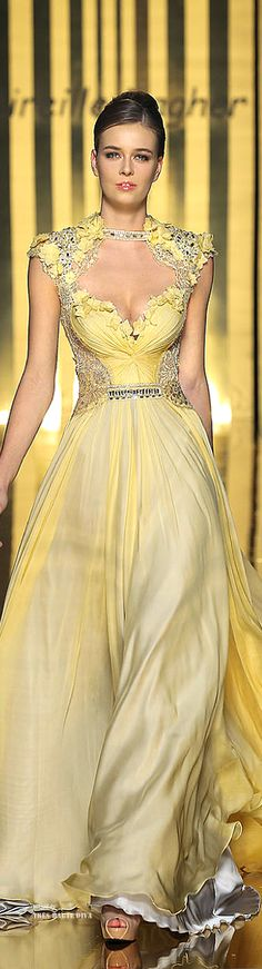 Mireille Dagher ~ Couture Embellished Heart Neckline Ball Gown,   Fall 2013