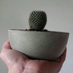 Seguimos buscando nuevos y lindos moldes para realizar macetitas de cemento. Este nos encanta